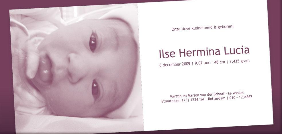 Drukkerij Teeuwen Ilse afbeelding 3